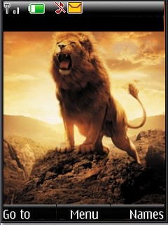Lion sunset s40v3 theme by shadow_20